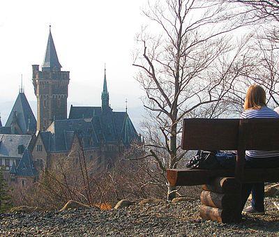 Blick vom Agnesberg auf das Schloss mit einer Bank