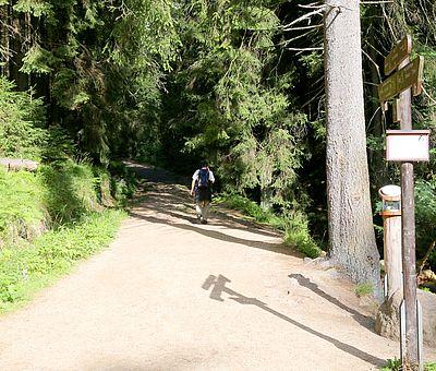 Wanderweg zum Eckerloch in Schierke