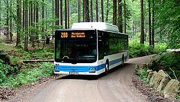 Ein Bus der Harzer Verkehrsbetriebe ist auf einem Waldweg unterwegs