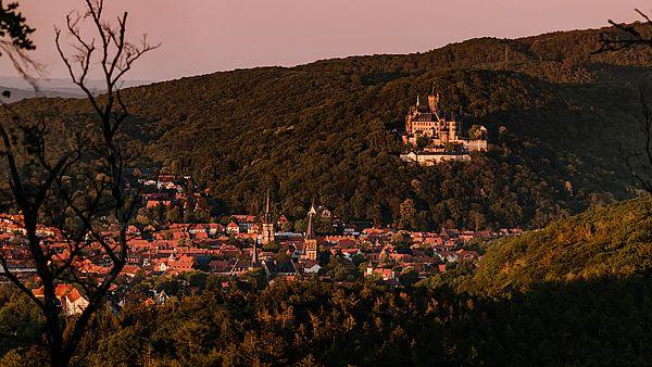 Schloss Wernigerode in der Abendsonne über der Stadt