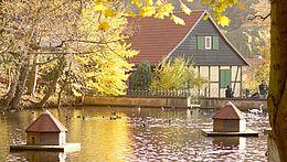 Teich im Wildpark Christianental im herbstlichen Licht