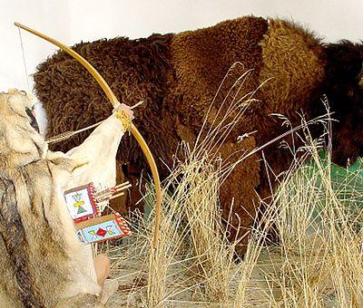 Ausstellung zur Bisonjagd im Indianermuseum Derenburg