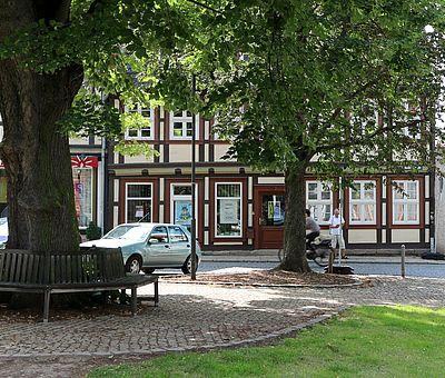 Platz an der Liebfrauenkirche mit einer Bank um den Baum