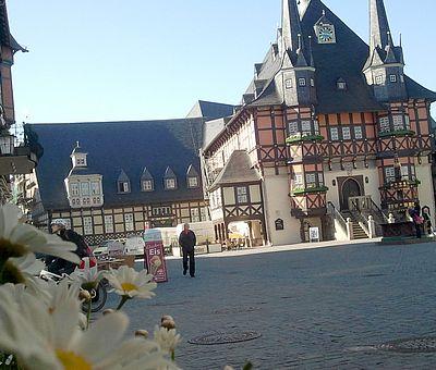 Das Rathaus in Wernigerode mit Marktplatz und Blumen im Vordergrund