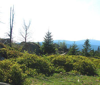 Blick zum Brocken von der Leistenklippe aus