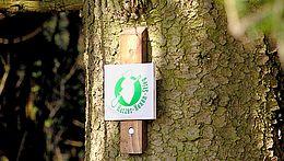 Schild Harzer Hexen-Stieg am Baum