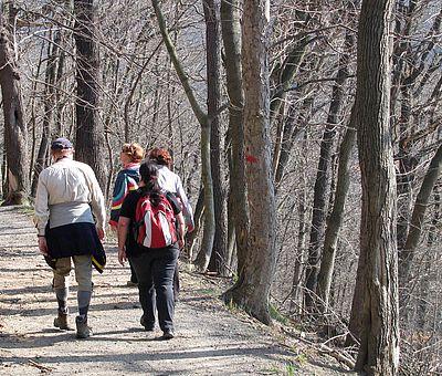 Personen laufen um den Agnesberg im Vorfrühling