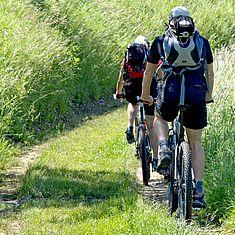 Zwei Fahrradfahrer fahren durch einen Wiesenweg