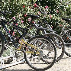 Fahrräder in einem Fahrradständer